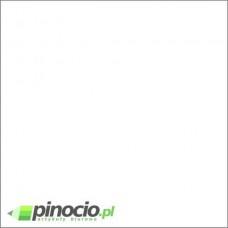 Brystol A1 biały rozmiar 594x841